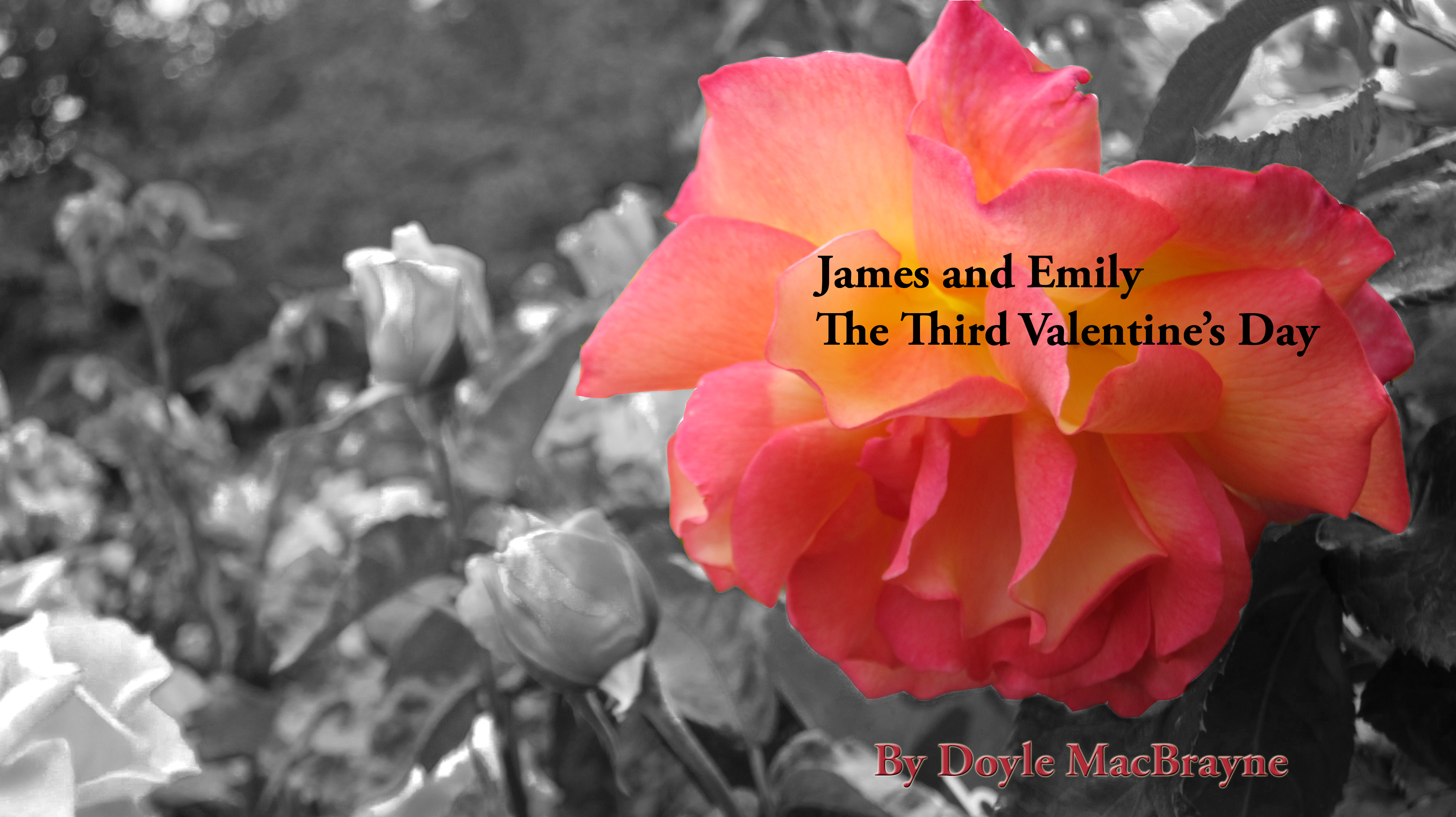 New Cover - New Book  The Third Valentine's Day  - James and Emily's Story