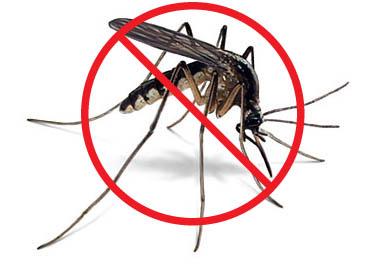 #WTFWednesday Migraines and Malaria